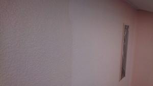 壁上塗り Photo_19-11-11-12-44-15.843
